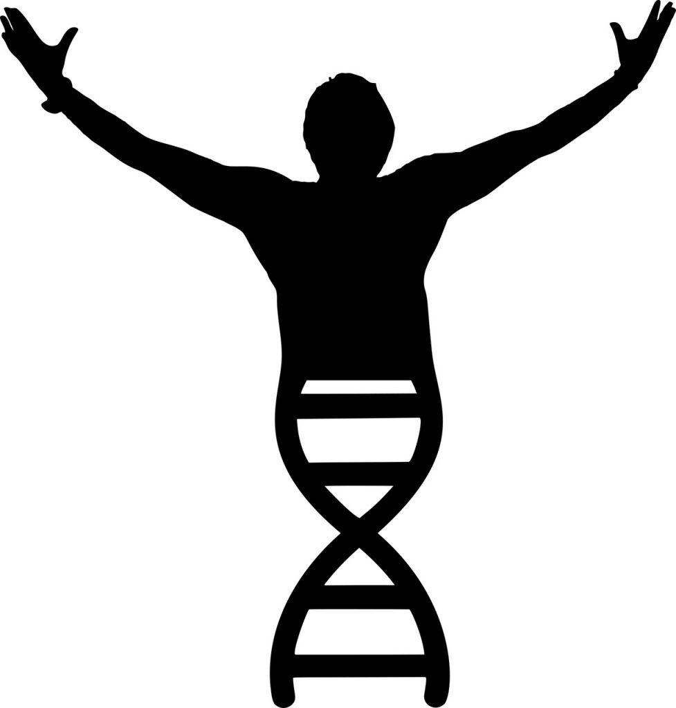 DNA Erfolgs-DNA